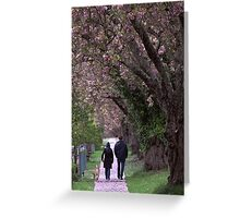 A cherry blossom stroll Greeting Card