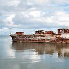 rusting wreck by Anne Scantlebury
