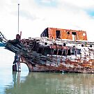 rusting wreck 2 by Anne Scantlebury
