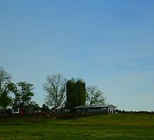 Florida Farmlands by dforand