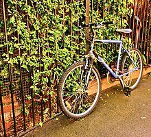 Bicycle by CJMcFarlane