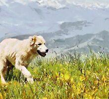 Dog walking by grass painting by Magomed Magomedagaev