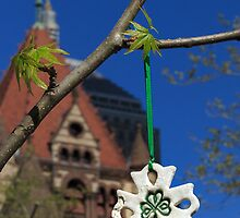 Hope blooms in Copley Square by Owed to Nature