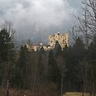 Hohenschwangau Castle  by John Vriesekolk