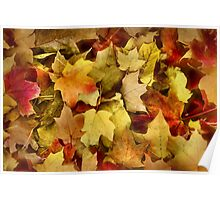 The Color of Autumn Poster