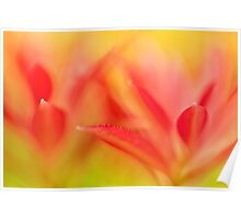 Red Plant Leaves - Abstract Poster