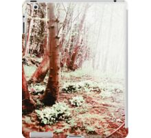 Blood Wood iPad Case/Skin