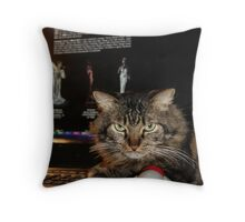 I Am Working On My Website! Throw Pillow
