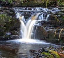 Glenariff Nature Reserve Waterfalls Sticker