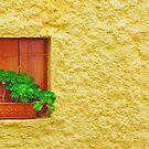 The Yellow Wall by EvaMarIza