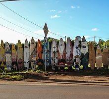 Paia Bus Stop by Cathy Donohoue