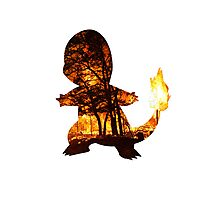 Charmander Silhouette Photographic Print