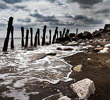 Spurn Head Beach by Theresa Elvin
