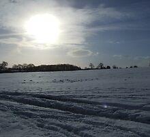 Sheffield Under Snow by NoveltyBobble