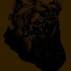 Bear Sketching by JordanDesigning