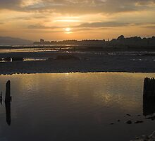 Broughty Ferry Sunset by Cornelia Schulz