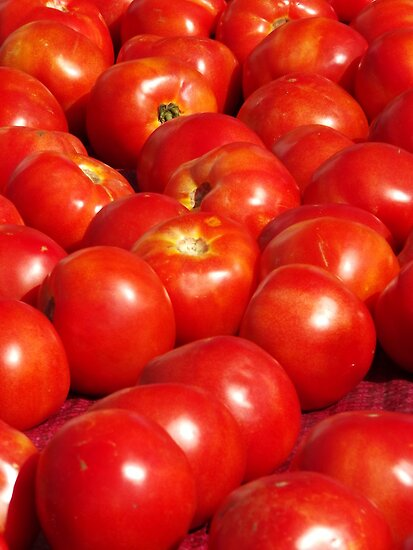 Tomatoes by Kay Reynolds