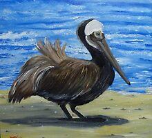 Brown Pelican on Datona Beach FLorida by towncrier