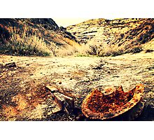 Abandon Mining Rail Photographic Print
