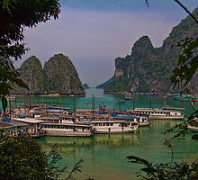 Vietnam. Halong Bay. From one of the islands. by vadim19