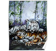 Tigers! Mother and Child Poster