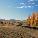 Autumn in the Monaro by Tim Coleman