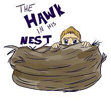 Hawk in His Nest by AlyKatStark
