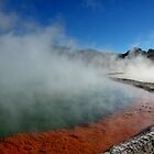 CHAMPAGNE POOLS - ROTORUA NEW ZEALAND by Vicki73