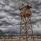 Manzanar by Cat Connor