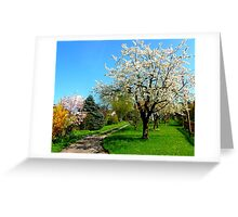 The Orchard Greeting Card