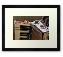 The Old Accordion Framed Print