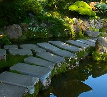 Stepping Stones by Barbara  Brown