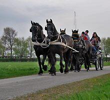 Four horses by Adri  Padmos
