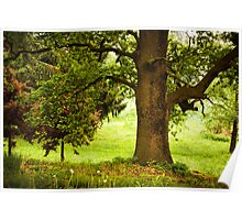 The vibrant colors of spring Poster