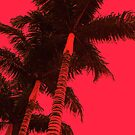 Red Palm by Emily McAuliffe