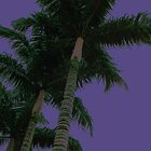 Purple Palm by Emily McAuliffe
