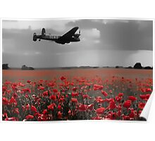 Lancaster Flyover with Red Poppies Poster
