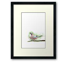 Bird Painting - Wild Jay on a Branch  Framed Print