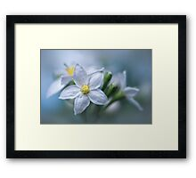Into the blues....  Framed Print