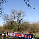 Narrow Boat In Spring by Samantha Higgs