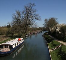 View From A Bridge - Kennet and Avon Canal by Samantha Higgs