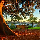Sydney Harbour Sunrise by S T