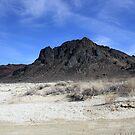 """The Black Rock"",Black Rock Desert,Gerlach,NV USA by Anthony & Nancy  Leake"