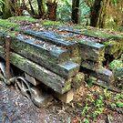 """""""Old LoggingTrailer"""" by jonxiv"""
