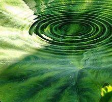 Ripples of Green by aprilann