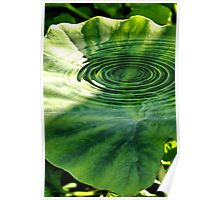 Ripples of Green Poster