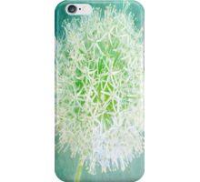 Magic - Fine Art Photograph of a White Allium on an Aqua Textured Background  iPhone Case/Skin