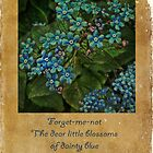 Forget-me-not - greeting card by  Kira Bodensted