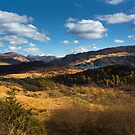 Highland view. by Dave Hare