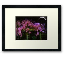 Confetti of Blossoms Framed Print